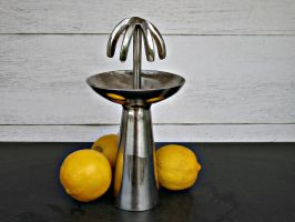 Umbrella Lemon Squeezer by ou8nrtist2