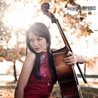 Sweet Cello XII by gregkalamp