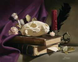 Raccoon skull still life by Mike-Sass