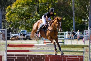 STOCK - Canungra Show 2012 118 by fillyrox