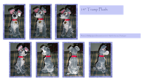 .: 2012 DisneyStore Tramp plush :. by Dunkin-Prime