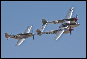 Planes of Fame 18 by AirshowDave