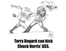 Bogard 1 Norris 0 by Symphonic-Massacre