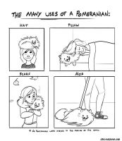 The Many Uses of a Pomeranian by autogatos