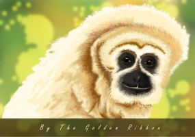 Gibbon by Golden-Ribbon