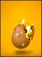 Egg-splosion by acidic055