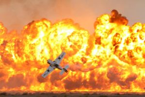 Al Ain Air Show by RSPCA