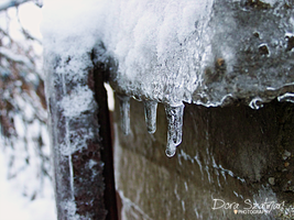The winter recurred by szdora91