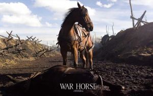 war horse by outatime63