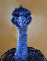 Emu watching YOU by HouseofChabrier