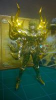 Cloth Myth EX Leo Aiolia God Cloth by sd102