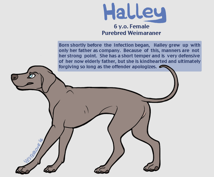 halley ref (tlfg protag 2/4) by Yesterlove