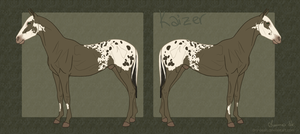 Kaizer by dry-oasis