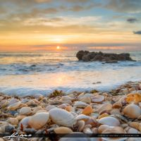 Beautiful-Sunrise-at-Beach-with-Seashells by CaptainKimo