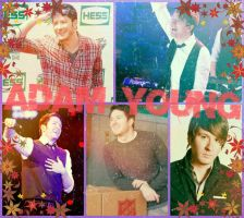 adam young aka owl city collage by meagan368