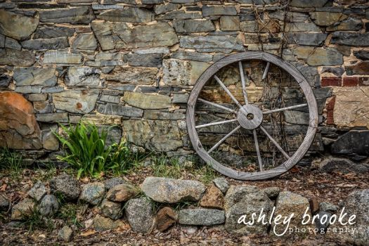 -- Wagon Wheel -- by AshleyxBrooke