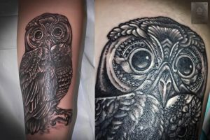 owl by ABYSS-TAT-2S