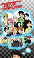 Team Haberkorn Collage REDO by zeldamuffin