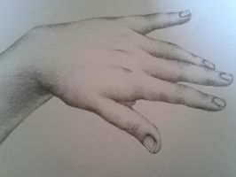 Hand by SqueezeBoxx