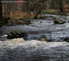 Little Bushkill Creek by The-Assistant