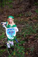 Female Link Cosplay by Malicious-Cosplay