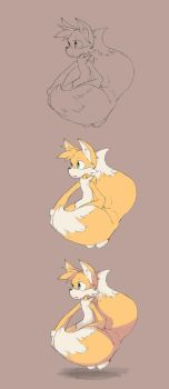 Tails x3 by finmeen