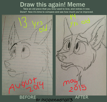 Draw This Again Meme :D by Phoenixmaster13