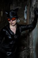 MCC: CATWOMAN: Dont piss me off by MummeryComics
