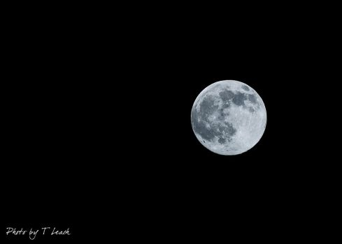 Full Cold Moon - December by tleach0608
