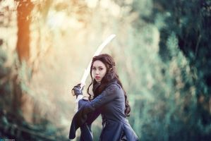 Cosplay : Arwen - The Lord of the Rings by MaxLy