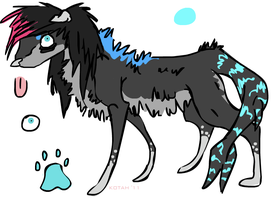 Scene shark dog cheaper by freaking-adopts