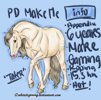 PD Make Me - Appendix QH by painted-cowgirl