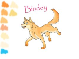 Bindey Reference sheet by HAYLO143