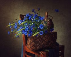 Still life with cornflowers by Daykiney