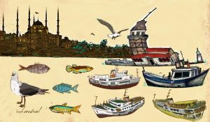 about istanbul by pervin