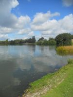 Petworth House and Park 064 by VIRGOLINEDANCER1
