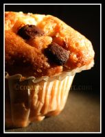 Chocolate Chip Muffin by bicyclegasoline