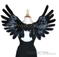 Psyche Angel Wings 4 by eProductSales