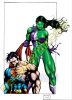 SHE-HULK VS SUPERMAN by Dwid