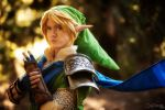 Portrait of Link, Legend of Zelda: Hyrule Warriors by Kohalu