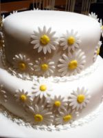 Daisy Wedding Cake by Sliceofcake