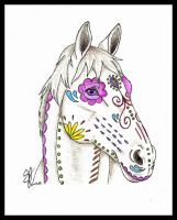 ~Painted Pony~ by bunniesbysarah