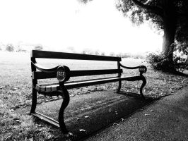 bench by BUBIMIR-39