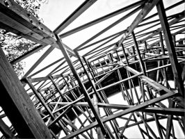 Wooden Roller Coaster by Life-For-Sale