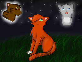 Squirrelflight`s Decision by mystic123987