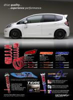Tanabe Suspension Ad - Fit by dkim1985