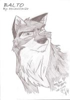 Balto by DeviantCariba