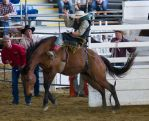 STOCK 2013 Rodeo-141 by fillyrox