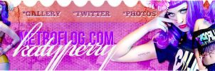 +Katy1perry.pedido banner. by PartywithDemetria