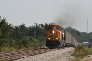 BNSF 8929 at McElhany by labrat-78
